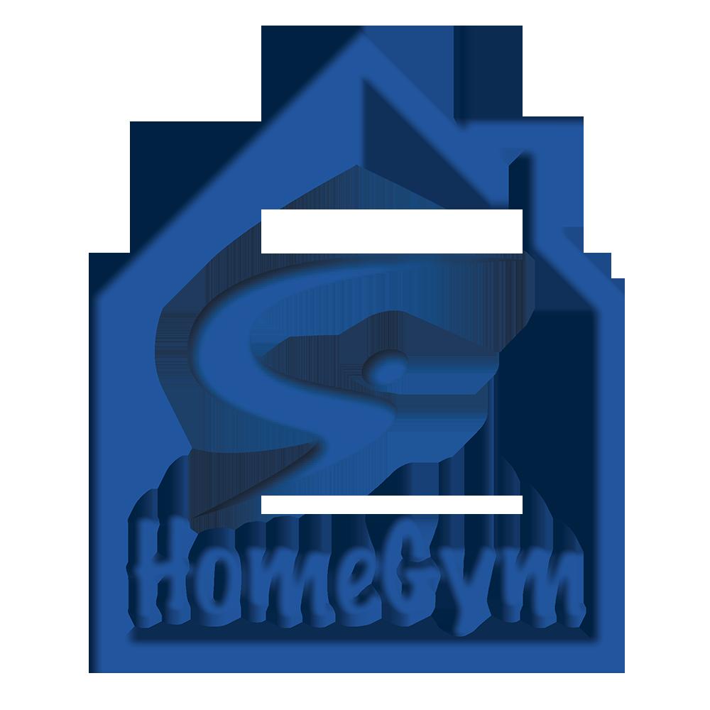 Sapphire Gymnastics Home Gym